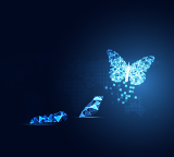 Butterfly transformation